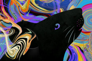 a drawing of a black mouse in profile with swirls of color in the background